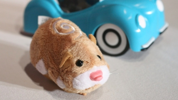 a-hamster-from-zhu-zhu-pets-is-shown-at-the-time-to-play-holiday-2009-most-wanted-list-event